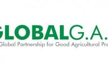 Giấy chứng nhận tiêu chuẩn Global GAP